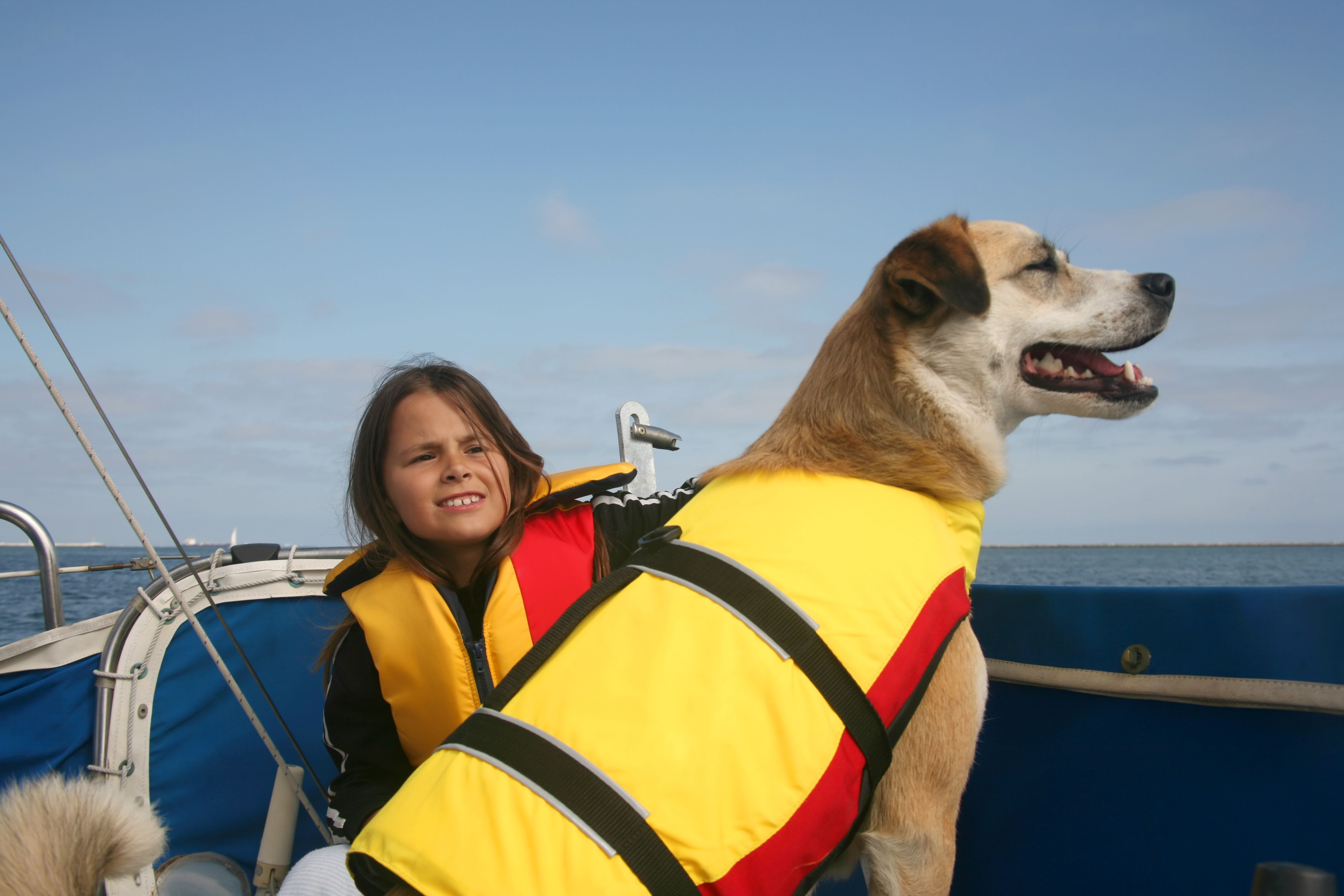 sailing_with_pets