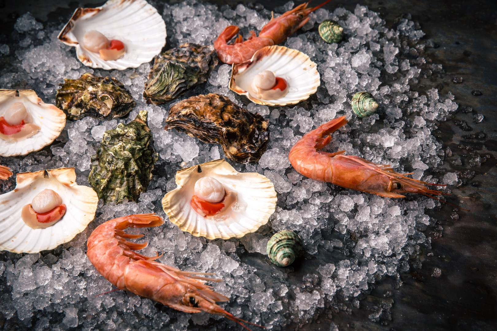 Scallops_Langoustines_Shrimps_Oysters_Mussels