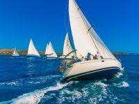 sailing boat at regatta