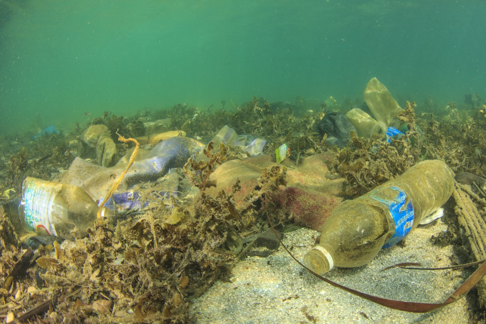 Sea Pollution - plastic