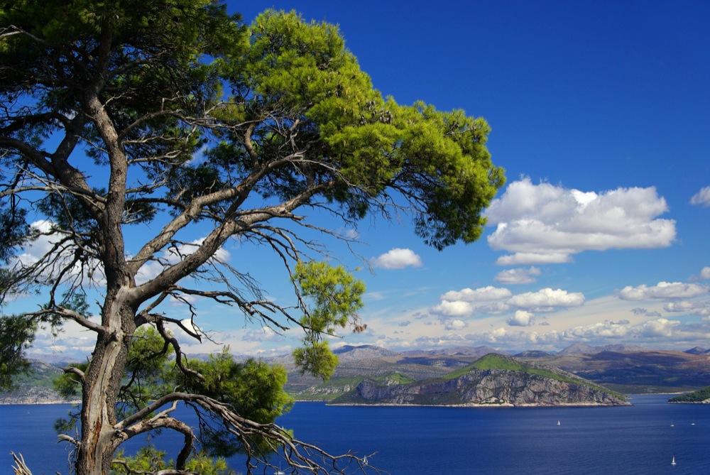 Elafiti islands near Dubrovnik